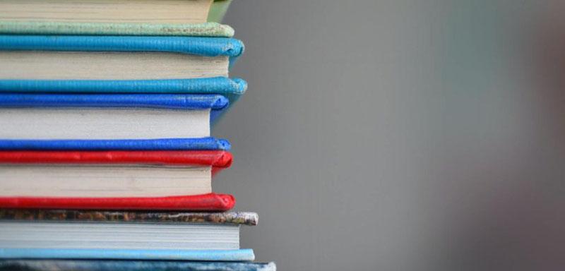 livros sobre autismo