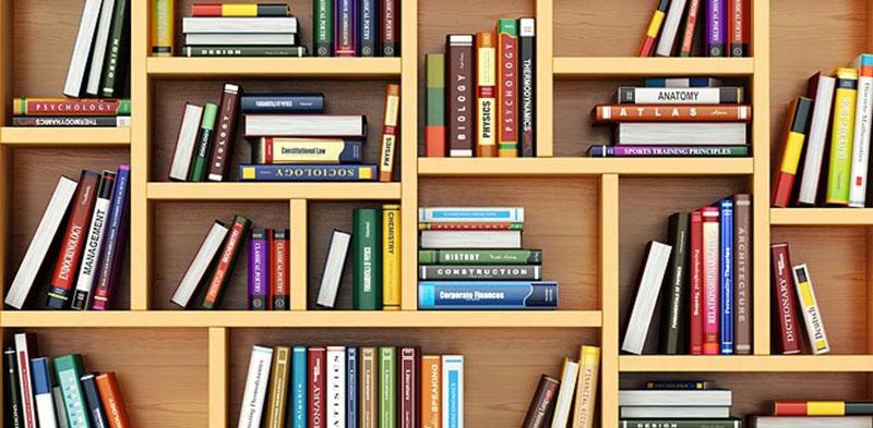livros sobre desenvolvimento infantil